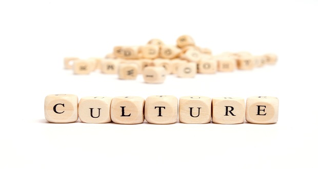 Belbin and Culture