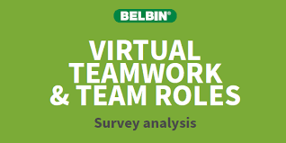 Virtual Teamwork and Belbin Team Roles